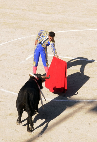Landscape & Travel - Bullfight in Arles